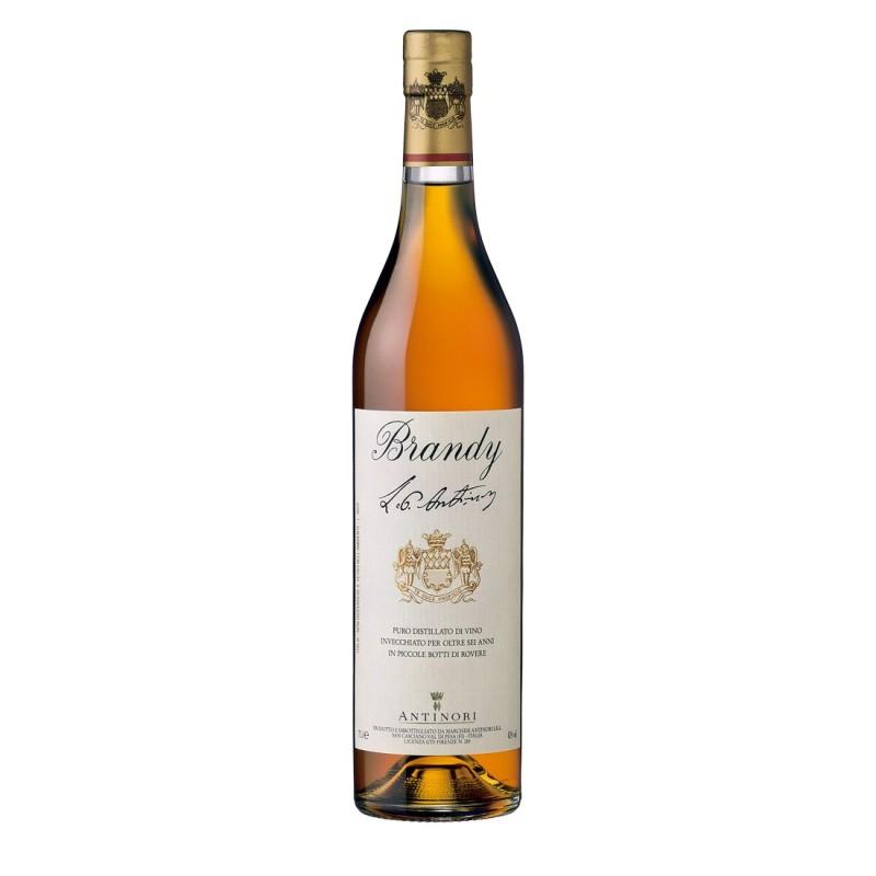 Brandy Antinori - Antinori...
